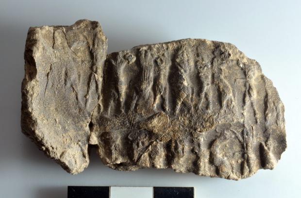 Cretule in argilla con impronte di sigillo