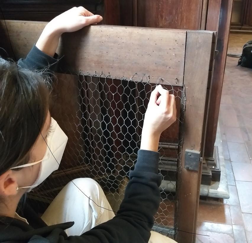 Biblioteca Lancisiana restauro